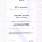 dokumenty-dominika-11