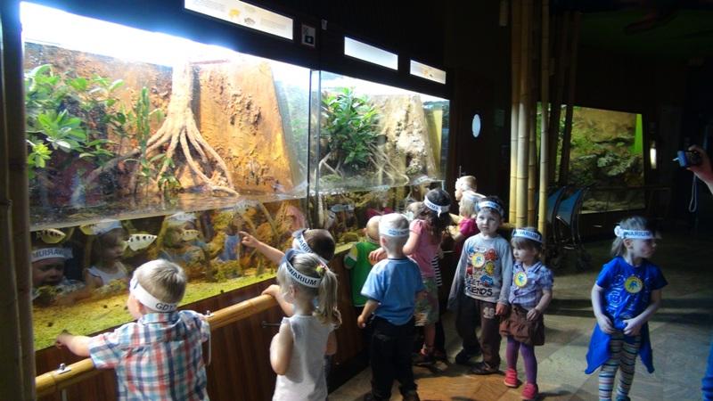 wycieczka do oceanarium w gdyni