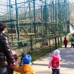 zielone lekcje wizyta w zoo przedszkole gdynia